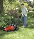 How short should you cut your grass